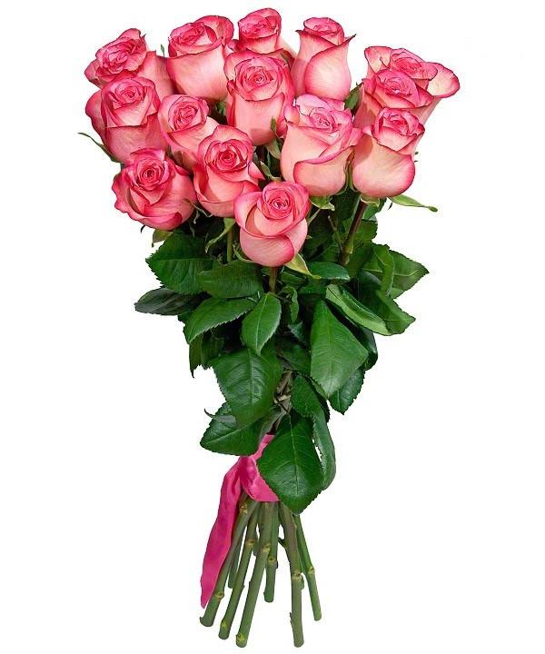 15 роз бело-розовых