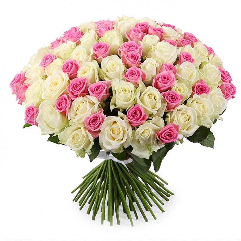 101 белая и розовые розы