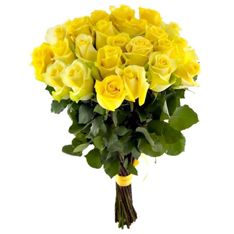 25 желтых роз